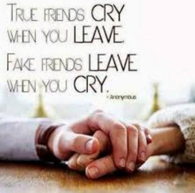 true friends, fake friends