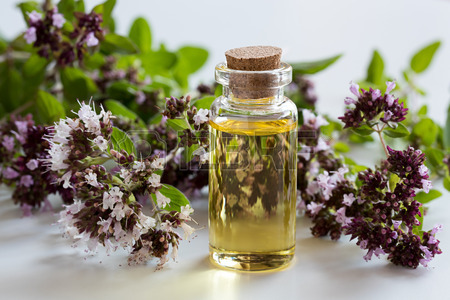 most popular essential oils and their uses