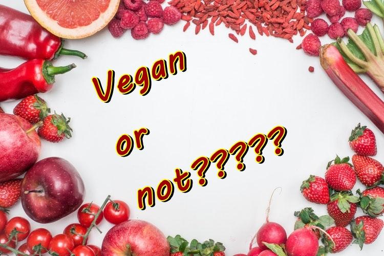 vegans are hypocrites